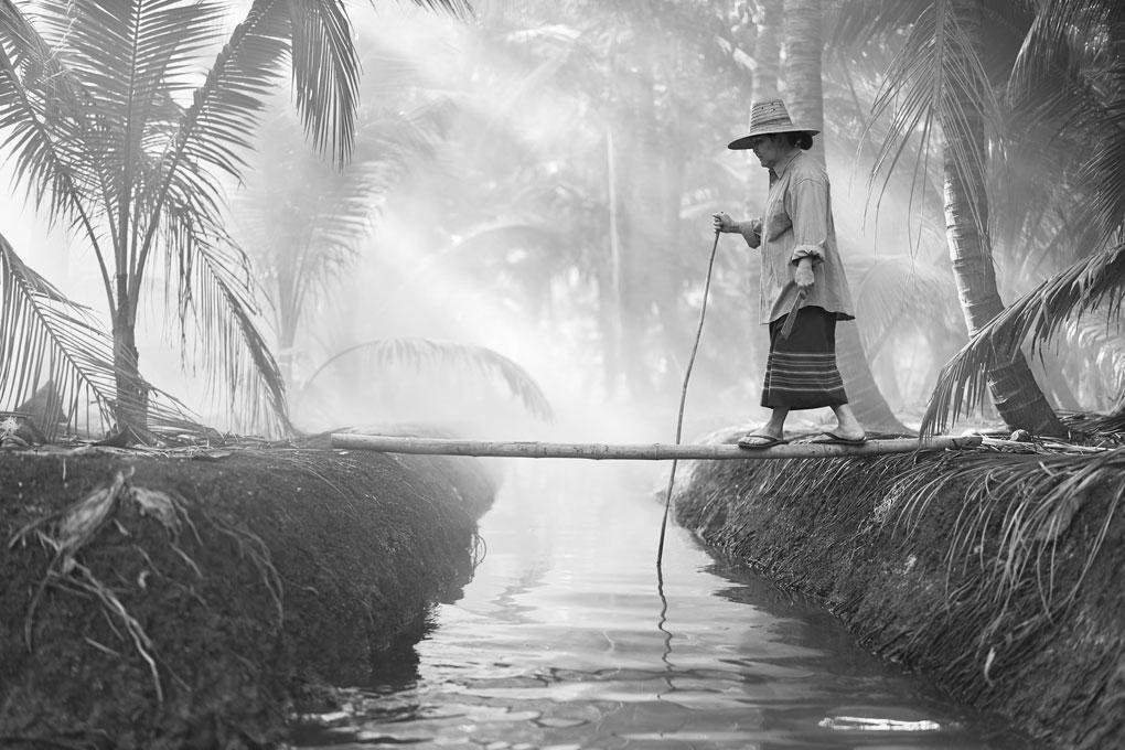 Joey-L-Thailand-Harmless-Harvest-009