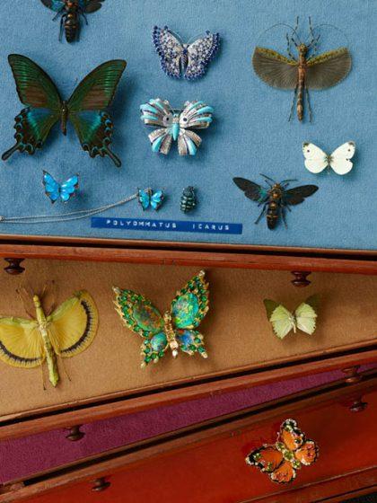 1000px_vogue_british_michael_baumgarten_butterflies05